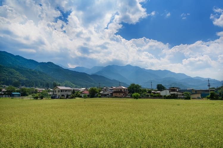 PEZ88_tanbotoyama500 (1)